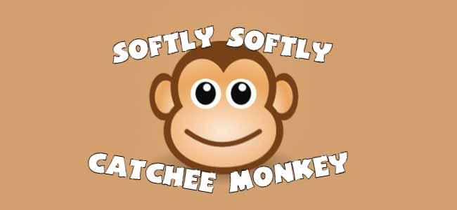 Softly softly catchy monkey